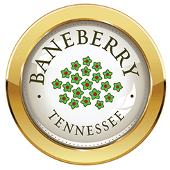 Baneberry Tennessee Government Logo
